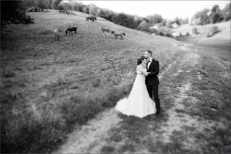 Hochzeit Brautpaar Pferdeweide beim Restaurant Zum Fröhlichen Landmann
