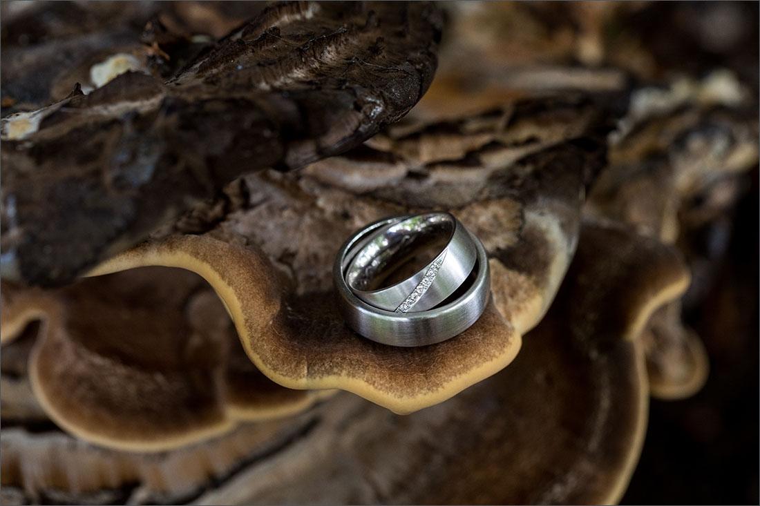 Standesamtliche Hochzeit in Rheinfelden